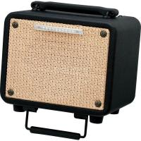 Ibanez Troubadour T15 Amplificatore per chitarra acustica