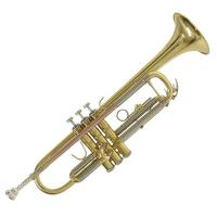 Tromba Bach TR650D in Sib Finitura Laccata - SPEDITA GRATIS